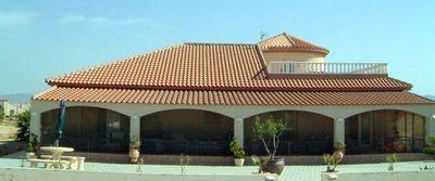 951: Country House for sale in Fuente Alamo